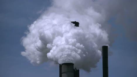 Smokestack-Steam-Billows-Strait-Up