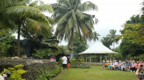 American-Samoa-Climbing-Palm-Tree