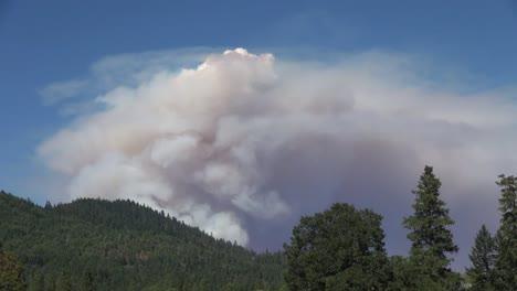 California-Billowing-Cloud-Of-Smoke-Over-Trees