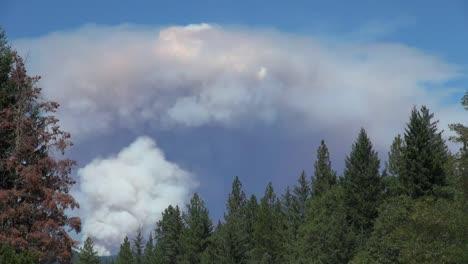 California-Double-Smoke-Cloud