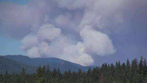 California-Smoke-Billowing