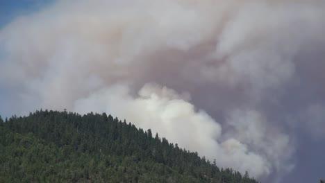 California-Smoke-Billows-Over-Trees-Time-Lapse