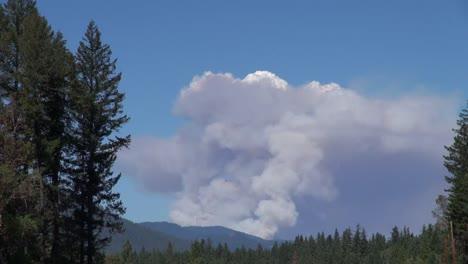 California-Smoke-Rising-Into-Sky