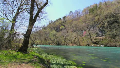 Missouri-Current-River-With-Trees-On-Bank-At-Big-Spring