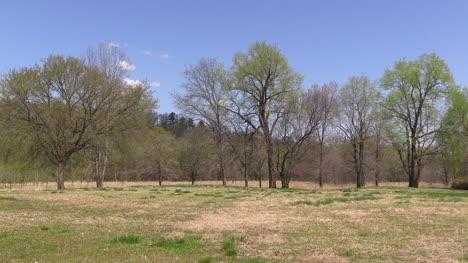 Missouri-Landscape-In-Spring
