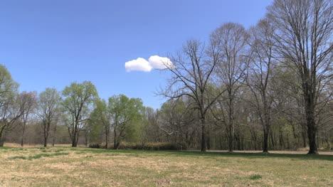 Missouri-Spring-Landscape