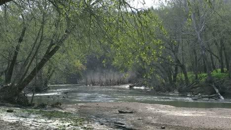 Missouri-Stream-And-Willows