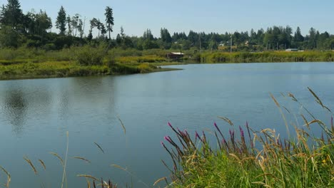 Oregon-Columbia-River-Backwater-View