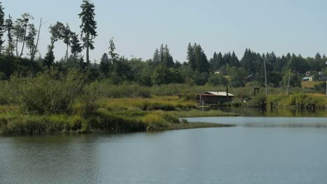 Oregon-Columbia-River-Backwater-With-Fishing-Camp
