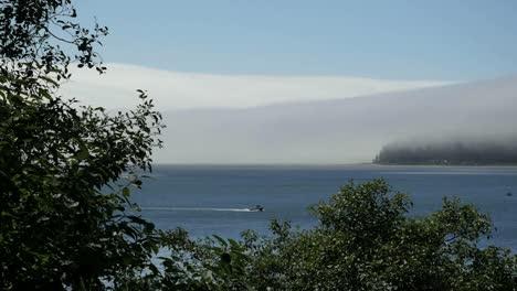 Oregon-Tillamook-Bay-Mist-Framed-In-Vegetation