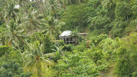 Samoa-House-En-La-Colina-Con-Palmeras