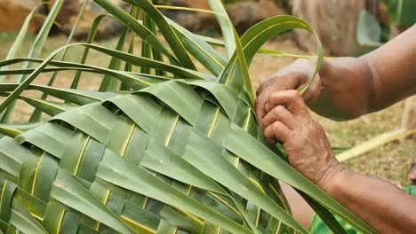 Samoa-Man-Weaving-Palm-Leaves