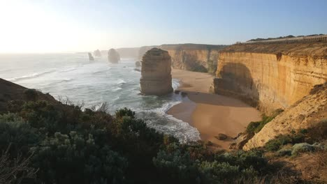 Australia-Great-Ocean-Road-12-Apostles-Foreground-Shrubs-Afternoon