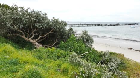 Australia-Mornington-Peninsula-Coast