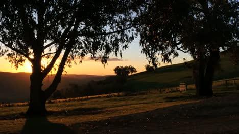Australia-Mt-Bellevue-Late-Afternoon