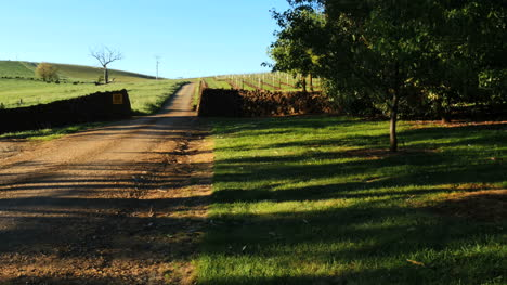 Australia-Mt-Bellevue-Road-Past-Vineyards