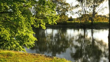 Australia-Murray-River-At-Albury-Sun-On-Leaves