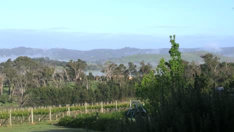 Australia-Outlook-Hill-Hills-And-Fog