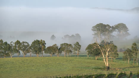 Australia-Outlook-Hill-Zoom-Out-From-Mist