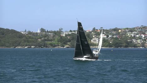 Australia-Sydney-Black-Sails-On-Sailboat