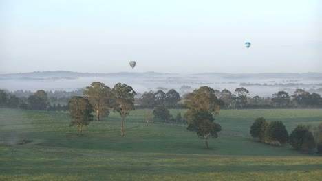 Australia-Yarra-Valley-Morning-Four-Balloons-Zoom-In