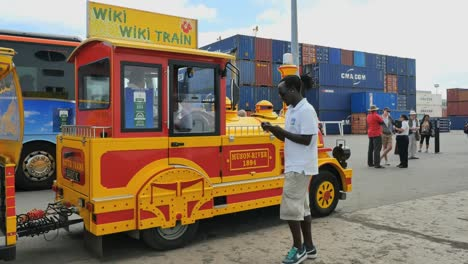 New-Caledonia-Noumea-Man-With-Tourist-Train
