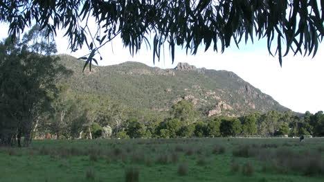 Australia-Grampians-Fringe-Of-Gum-Over-Scene
