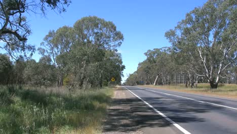 Australia-Road-With-Traffoc-And-Kangaroo-Sign