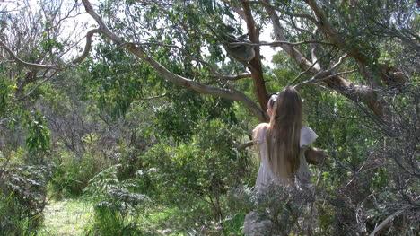 Australia-Turista-Niña-Y-Mujer-Viendo-Koala-En-árbol