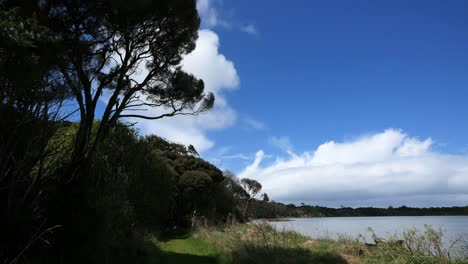 New-Zealand-Catlins-Tahakopa-Bay-With-Cloud