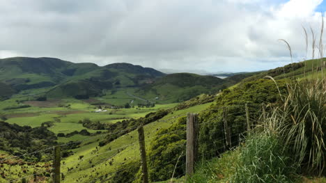 New-Zealand-Catlins-View-Beyond-Fence