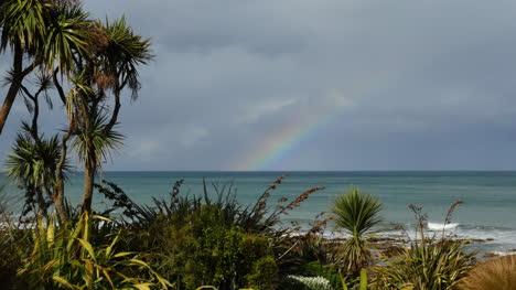 New-Zealand-Kaka-Point-Rainbow-Mov