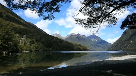 Neuseeland-See-Gunn-Umrahmt-Mit-Ast-Fjordland-Fi