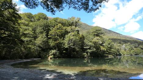 Neuseeland-See-Gunn-Bewaldete-Ufer-Fjordland