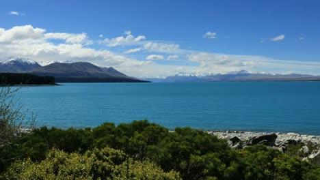 New-Zealand-Lake-Pukaki-Foreground-Shrubs