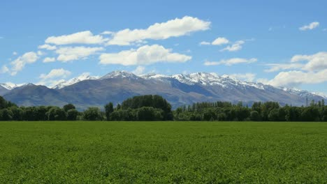 New-Zealand-Mountains-With-Green-Field