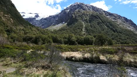 New-Zealand-Río-Flowing-Fiordland-National-Park