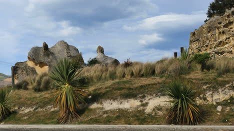 New-Zealand-Rocks-And-Grass-In-Wind