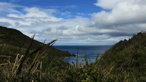 New-Zealand-View-Of-Bay-From-Nugget-Point-Road