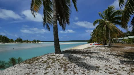 Aitutaki-Beach-Palm-And-Shadow-By-Channel-To-Lagoon