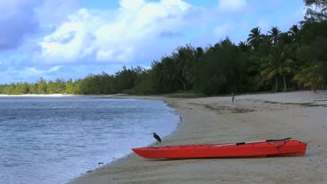Aitutaki-Bird-And-Boat-On-Beach