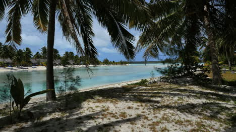 Aitutaki-Channel-To-Reef-With-Palms