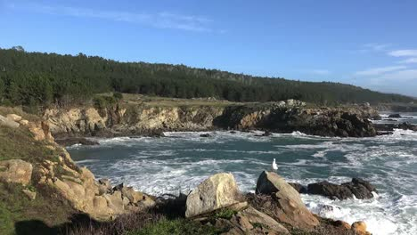 California-Gerstle-Cove-Waves-And-Bay-At-Salt-Point-State-Park