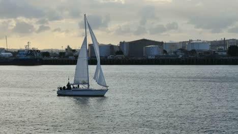 New-Zealand-Auckland-Bay-Sailboat-Sailing
