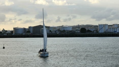 New-Zealand-Auckland-Bay-Sailing