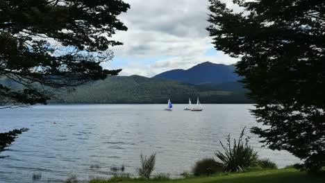 New-Zealand-Lake-Te-Anau