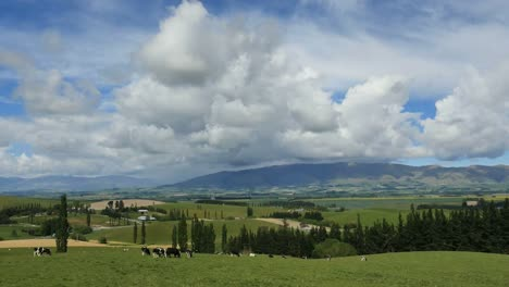 New-Zealand-Mackenzie-Countryside-Landscape-With-Clouds