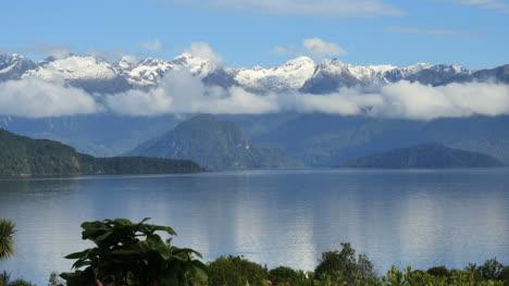 New-Zealand-Milford-Lake-Manapouri-Bird-Flying