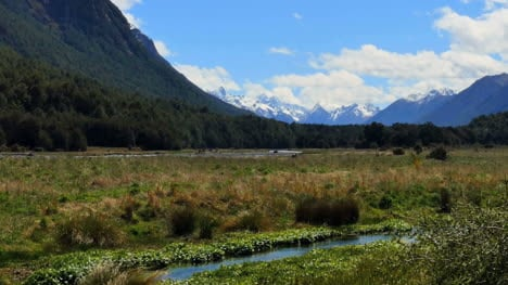 New-Zealand-Milford-Sound-Road-Marsh-Fiordland-Pan