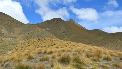 New-Zealand-Pass-With-Tussock-Grass-Time-Lapse